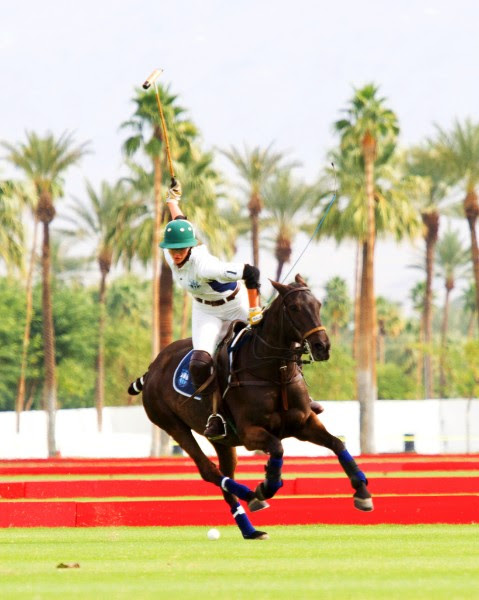 Eldorado Polo Club News Sept 2018