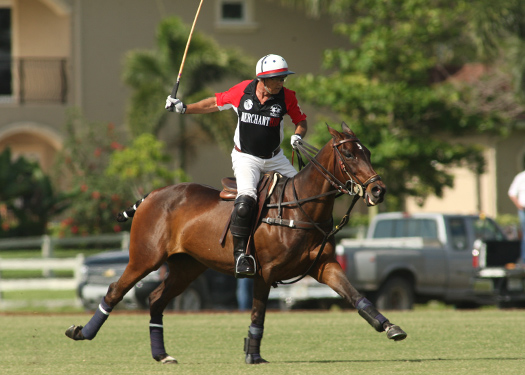 Photos-Palm City Open-Grand Champions Polo Club